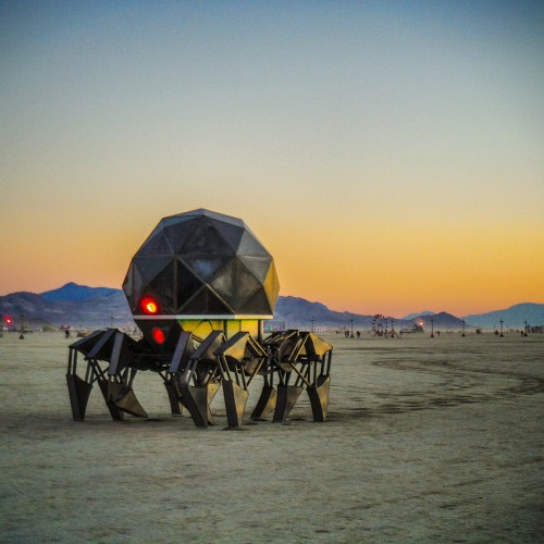 Tinspider on the playa